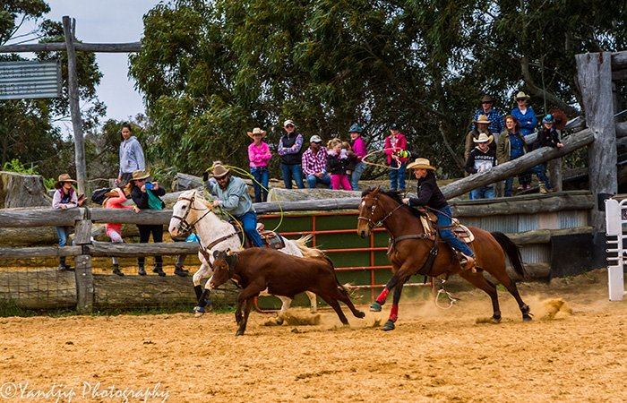 Roping and rodeo | Double Barrel Entertainment