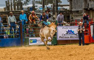 Harvey Dickson Rodeo 2019