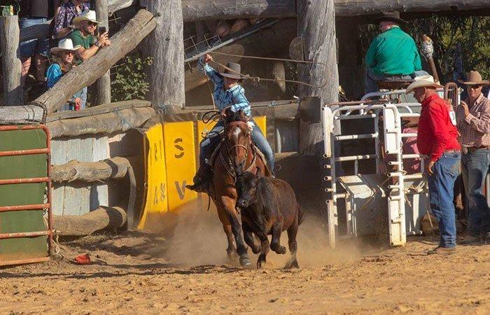 Advanced Calf Roping/ Breakaway Roping School | Bullsbrook