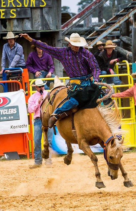 Saddle Bronc in Western Australia